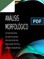 Análisis morfológico.pptx