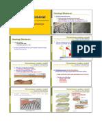 09-Waktu Geologi
