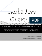 POVOS_INDIGENAS.pdf
