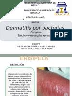Dermatitis Por Bactrias