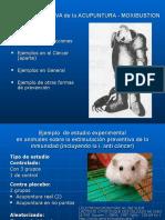 Inmunidad Accion Preventiva 2013