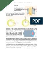 hoja-problemas-tema-2-2.pdf