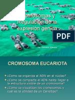 Cromosomas y Regulacion Curso La Pampa