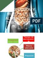 Propulsión y Mezcla de Los Alimentos en El
