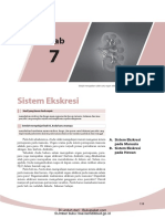Bab 7 Sistem Ekskresi