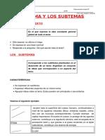 167602950-El-Tema-y-Los-Subtemas-Raz-Verbal.docx