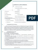Plandetrabajodelcomitambiental2015 150427184319 Conversion Gate01