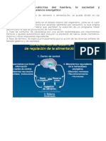 Regulación Neuroendócrina Del Hambre 1-4 Pag
