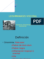 TEMA v Leishmaniasis Visceral