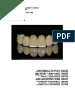 Trabajo Porcelanas Dentales