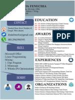 CV dinda