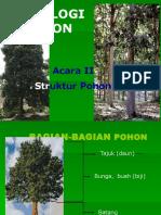 Kuliah 2 (Struktur Pohon) D3 2013-1