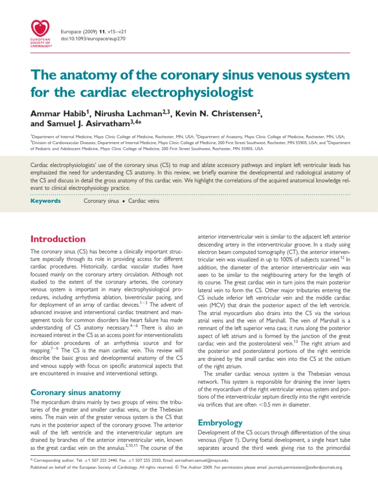 The Anatomy of the Coronary Sinus | Atrium (Heart) | Heart Valve