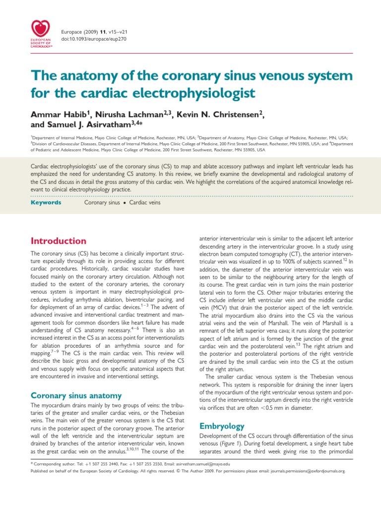 The Anatomy Of The Coronary Sinus Atrium Heart Heart Valve