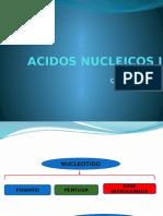 Acidos Nucleicos i -2013 - 1