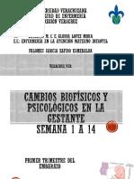 cambios biofisicos y psicologicos  2