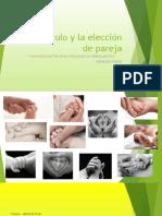 El_Vinculo_y_la_eleccion_de_pareja_134840.pptx