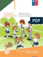 2014Enetenetuprimerobasico.pdf