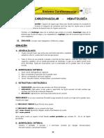 CAP-VII.pdf