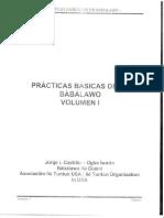 337805801-Praticas-Basicas-de-Babalawo-Ifa-Cubano.pdf