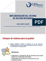 implementacion del sistema de gestion integrado