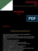 TP3-Apuntes