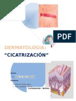 Cicatrizacion Dra Vera