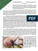 2.-DORES-DENTÁRIAS-DE-ORIGEM-OBSCURA