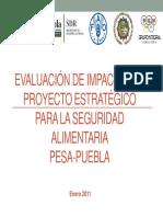 Informe EVALUACION PESA