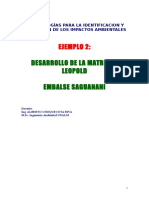 335173798-Ejemplo-2-Matriz-de-Leopold-Embalse-Saguanani.doc