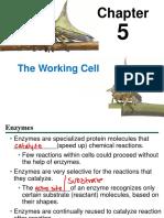 05_Lecture_Presentation.pdf