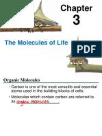 03_Lecture_Presentation.pdf