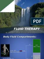 Fluid Oter Apia 2