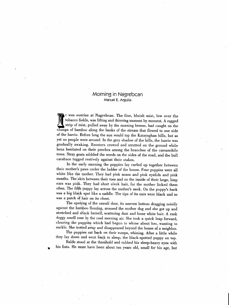 analysis about morning in nagrebcan Free essay: analysis paper: how my brother leon brought home a wife by   arguilla and margarita estabillo in barrio nagrebcan in bauang,  labang's  white coat, which i had washed and brushed that morning with.