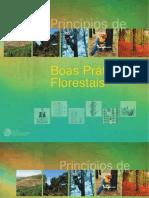 Boas Praticas Florestais