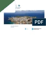 PMUS Resumen Ejecutivo Version Castellano