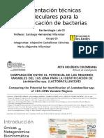 Presentación Técnicas Moleculares Para La Identificación de Bacterias