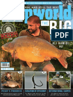 Carpworld