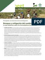 Bosque y mitigacion al cambio climatico.pdf