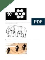 werkblad natuur en techniek gezichtsbedrog