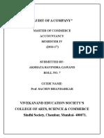 Audit Project Sem 4