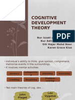 Cognitive Development Theory EDUP3023