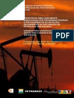 royalties_rjaneiro.pdf