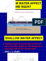3-3 Shallow Water Effect and Squat