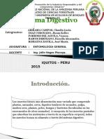 Exposicion de Entomologia.(Sistema Digestivo)
