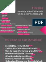Flora Les