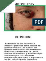 BartoLenoSis