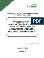 perfilcuyes.pdf