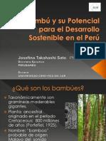 Bambu_JosefinaTakahashi