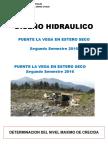 DISEÑO HIDRAULICO TALLER DE PROYECTOS (2-2016).pdf